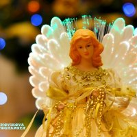 С Рождеством! :: Kseniya Novikova