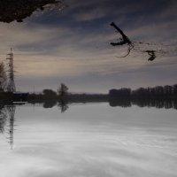 Минусинская протока. :: Дмитрий Петров