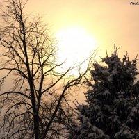 полуденное солнце :: Александр Маликов
