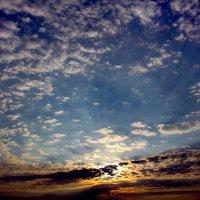 краски утра :: Константин Александрович