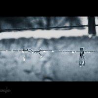 Дождливая погода. :: Солнечная Лисичка =Дашка Скугарева