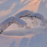 Под тяжестью снега :: Николай Мальцев