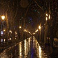 Одесса. Ночной Приморский бульвар :: Виталий Балан