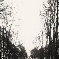 На улице Пирогова :: Женя Рыжов