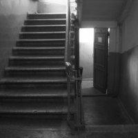 лестница парадная :: Зоя Яковлева