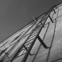 лестница :: Зоя Яковлева
