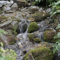 горный Алтай :: наталья якушева