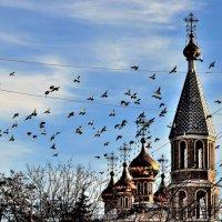 Вести о Рждестве Христова :: Вячеслав Платонов