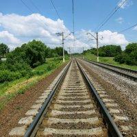 Железная дорога. Летний пейзаж :: Александр Николаев