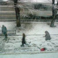 Первый снег :: Анастасия Ухач