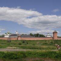 Суздаль (монастырские стены) :: Валерий Коноплев