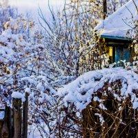 Зима :: Богдан Плавко