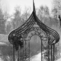 Прогулка в парке :: Марина Соколовская