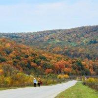 Осень в Жигулёвских горах :: Алексей Спирин