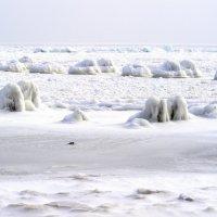 Море замерзло :: Александр Скамо