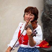 Уличная виолончелистка :: Максим Логунов