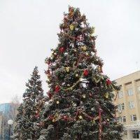 Новый год 2013 :: AV Odessa