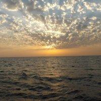 Море :: Vika Kleinos