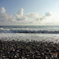 Море Адлер :: Катерина Некрасова