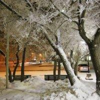 Зимний  вечер :: Геннадий Тарасков