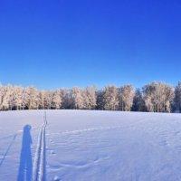 Панорама :: Николай Мальцев