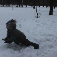 Ура!Снег! :: Аня Алексеева