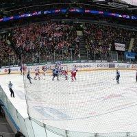 СКА-Локомотив 4:0. Ледовый дворец :: Алексей Кудрявцев