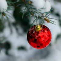 Зимнее волшебство... :: Николай Осипенко