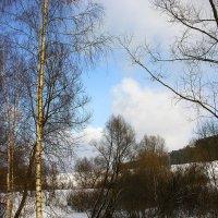 """Из альбома"""" зима в Антоновке"""" :: Тамара Цилиакус"""