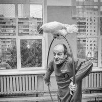 Акробаты :: Alexander Portniagyn