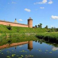 У стен Спасо-Евфимиева монастыря. :: Larisa