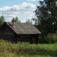 Старая банька. :: Андрей Зайцев