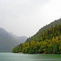 Озеро Рица :: Николай Тегин
