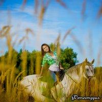 Конные прогулки :: Георгий Греков