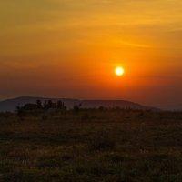 Закат на Семинском перевале :: Ирина Терентьева