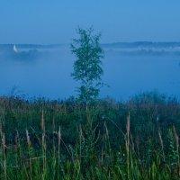 Туманный залив. :: Виктор Евстратов