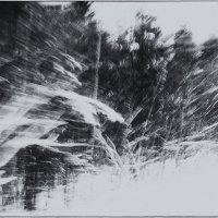 зима :: Laska .....