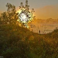 Солнце взошло! :: Виктор Евстратов