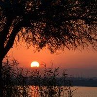 Закат на озере :: Сергей Столбов