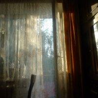 Магия заходящего солнца :: Anastasia Kaurova