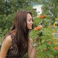 У рябинки :: Николай Терентьев