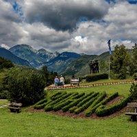 The Alps-2014-Slovenia-Bohinj :: Arturs Ancans