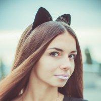 котэ2 :: Анастасия Переплетова