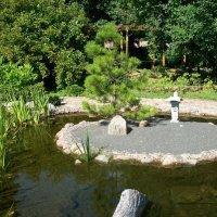 Японский уголок Ботанического сада. :: Виктор Елисеев
