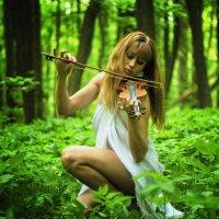 Мелодия леса :: Serg Y