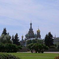Собор Воскресения Христова. :: Владимир Гилясев