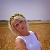 С пшеницей :: Евгения Чернова