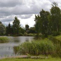 Латгальский пруд. :: zoja