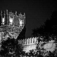Башня Новодевичеьего монастыря. Ночь :: Alexandr Zykov