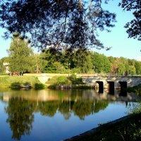 Закат на пруду.Отражение :: Лидия (naum.lidiya)